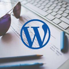 Soofos Online cursus Wordpress